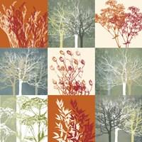 Botanical Nine Framed Print