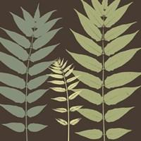 Field Botanical Framed Print