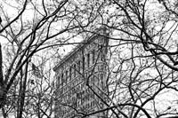 Veiled Flatiron Building (b/w) Fine Art Print