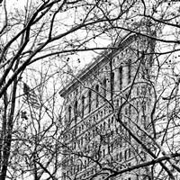 Veiled Flatiron Building (b/w) (detail) Fine Art Print