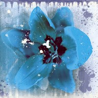 Tulip Fresco (blue) Fine Art Print