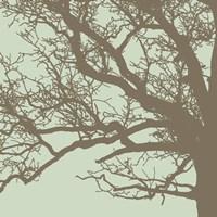 Winter Tree III Framed Print
