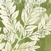 Sage Foliage Framed Print