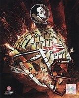 Florida State University Seminoles Helmet Composite Fine Art Print