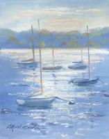 Sunlight Sailboats Fine Art Print