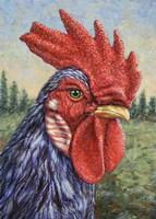 Blue Rooster Fine Art Print