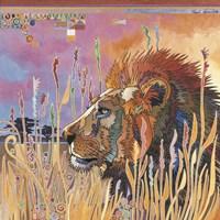 Chobe Park Lion Fine Art Print