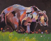 Copper Bear Fine Art Print