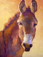 Fernando Fine Art Print