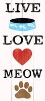 Live Love Meow Framed Print