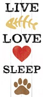 Live Love Sleep Framed Print