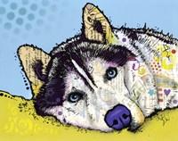 Siberian Husky 2 Framed Print