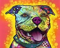 Dewey Pit Bull Fine Art Print