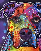 American Bulldog 3 Fine Art Print