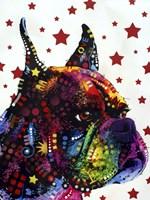 Profile Boxer 2 Fine Art Print