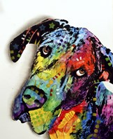 Tilted Dane Fine Art Print