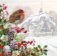 Winter Robin Fine Art Print