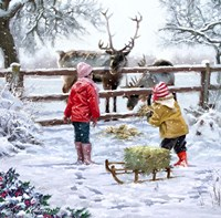 Feeding Reindeer Framed Print