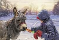 Feeding Donkey Fine Art Print