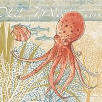 Oceana IV Fine Art Print
