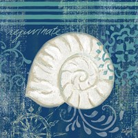 Navy Blue Spa Shells I Framed Print