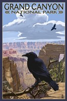 Grand Canyon National Park (crow) Fine Art Print