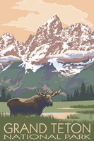 Grand Teton National Park Moose Framed Print