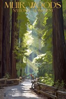 Muir Woods National Monument Fine Art Print