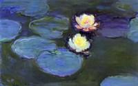 Water Lily Detail Blur Fine Art Print