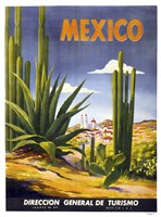 Mexico Cactus Fine Art Print
