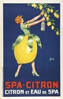 Spa Citron Fine Art Print
