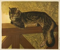 Steinlen Cat Fine Art Print