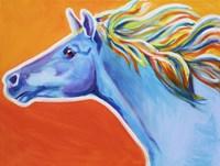 Horse Like The Wind Fine Art Print