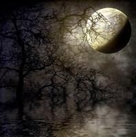 Last Chance Moon Fine Art Print