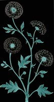 Dandelion Dance Fine Art Print