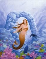 Mermaid and Turtle 1 Fine Art Print