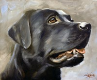 Black Lab 2 Fine Art Print