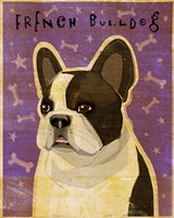 French Bulldog - Whiten Brindle Fine Art Print