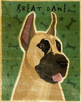 Great Dane 1 Fine Art Print