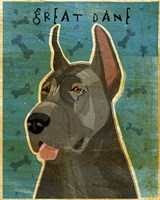 Great Dane Blue Fine Art Print