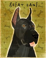 Great Dane 3 Fine Art Print
