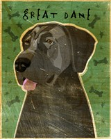 Great Dane 5 Fine Art Print
