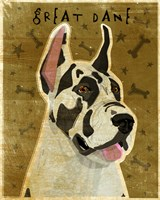 Harlequin Great Dane 1 Fine Art Print
