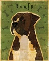 Boxer - Brindle Fine Art Print