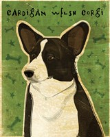 Cardigan Welsh Corgi Fine Art Print