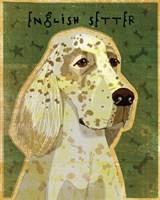 English Setter Fine Art Print
