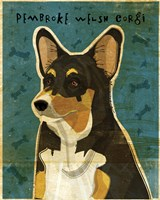 Pembroke Welsh Corgi - Tri-Color Fine Art Print