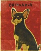 Chihuahua (black and tan) Fine Art Print