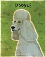 Poodle (grey) Fine Art Print