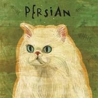 Persian Framed Print